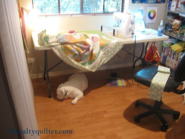 The Salty Quilter - Sunny Stars - Piecing the quilt with my helper bulldog