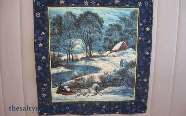 The Salty Quilter - Winter Wonderland Panel - Finished