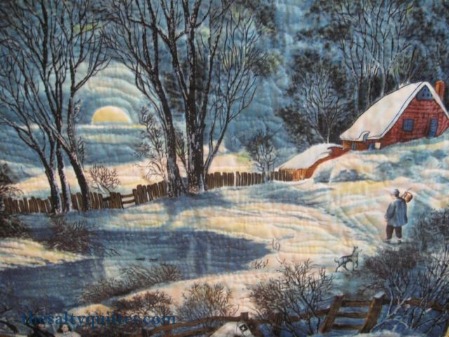 The Salty Quilter - Winter Wonderland Panel - Close up